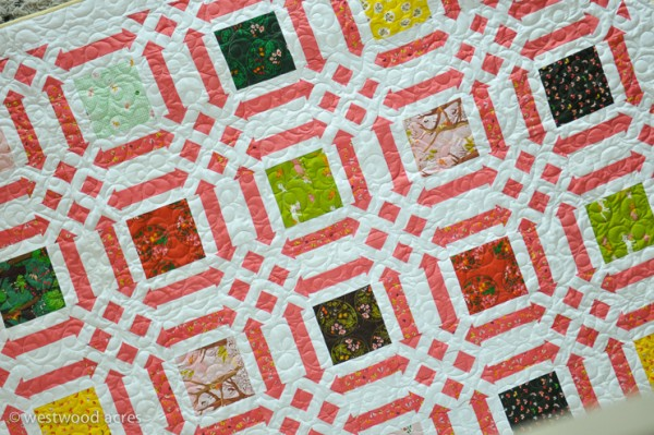 Quilt Pattern Quilts-5