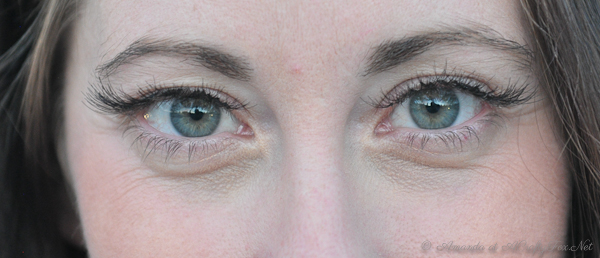 Diy Eyelash Extension Tutorial With Pictures A Crafty Fox